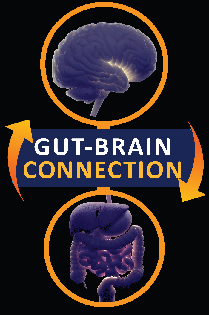 Having a second brain – The GUT